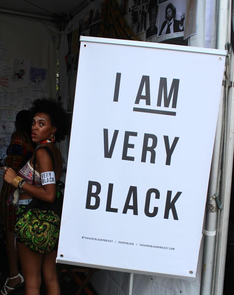 Awareness, Blackness - AfroPunk APiF